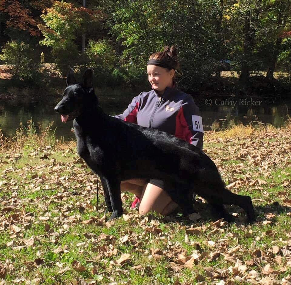 Sochi and Caitlin 10/15/16 GSDC of Greater New Haven Inc Judge: William Daugherty 2nd place